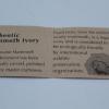 Korite mammoth ivory