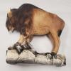 Elk Island National Park Bison Souvenirs